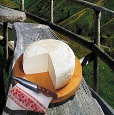 20 motivi per scegliere i formaggi Italiani
